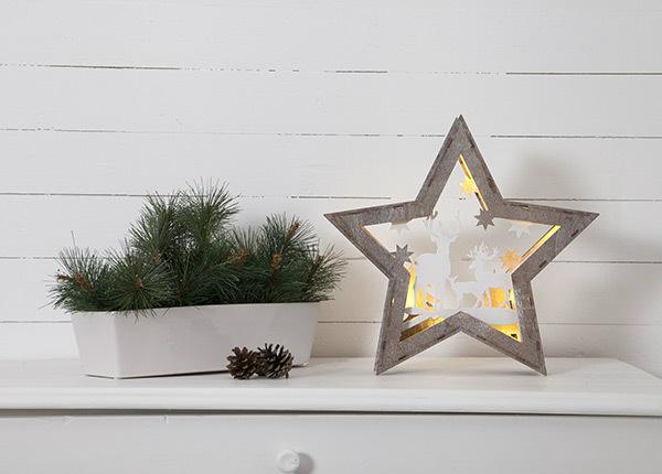 LED рождественское украшение Fauna AA-142981