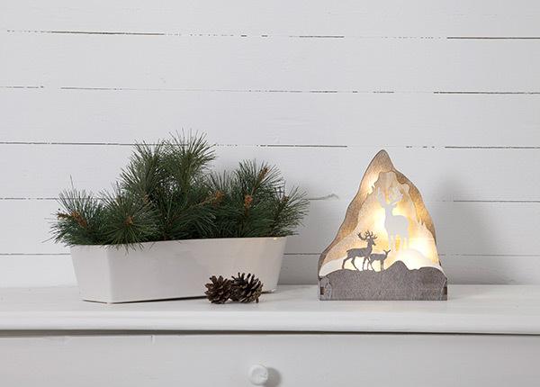 LED рождественское украшение Fauna AA-142986