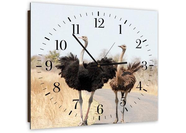Настенные часы с картиной Two ostriches ED-143966