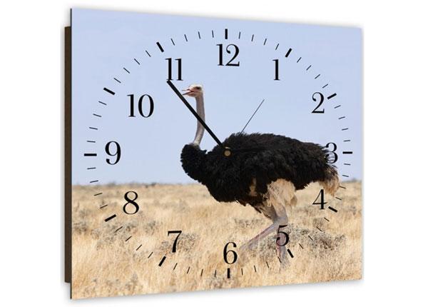 Настенные часы с картиной Ostrich 1 ED-143973