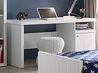 Рабочий стол Robin-VIP AQ-51646