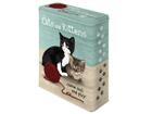 Жестяная коробка Cats and Kittens 4 л SG-56968