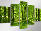 Картина из 5-частей Местный лес ED-65587
