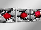 Картина из 3-частей Роза ED-67542
