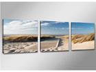 Картина из 3-частей Пляжный мост ED-67560