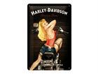 Металлический постер Harley-Davidson Baker Babe 20x30 см SG-68154