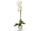 Искусственный цветок Белая орхидея 75 cm EV-69034