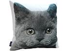 Декоративная подушка Кошка 45x45 cm QA-71970