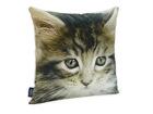 Декоративная подушка Кошка 45x45 cm QA-71971