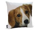 Декоративная подушка Собака 45x45 cm QA-71974
