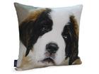 Декоративная подушка Собака 45x45 cm QA-71975