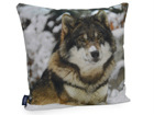 Декоративная подушка Волк 45x45 cm QA-71982