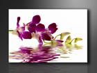 Настенная картина Punane orhidee 60x80 см ED-86113