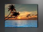 Настенная картина Palmid 60x80 см ED-86115