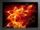 Настенная картина Огненный цветок 60x80 см ED-86123