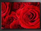 Настенная картина Roosid 120x80 см ED-86182