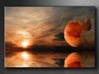 Настенная картина Moon 120x80 cm ED-86216