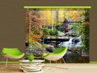 Фотошторы Watermill in autumn, 280x245 см ED-87052