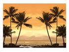 Фотообои Caribbean beach 400x280cm ED-88111