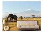 Фотообои Kilimanjaro elephants 400x280cm ED-88112