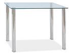 Обеденный стол Ted 100x60 cm WS-88802
