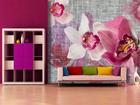 Флизелиновые фотообои Pink orchids 360x270 см ED-90664