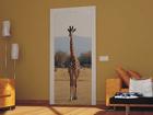 Флизелиновые фотообои Giraffe 2 90x202 см ED-91087
