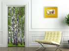 Флизелиновые фотообои Birch grove 90x202 см ED-91117