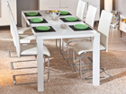 Удлиняющийся обеденный стол Ottawa 160-220x90 cm AY-91155