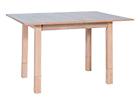 Удлиняющийся журнальный стол Iza WS-91905