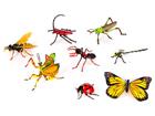 3D пазл Дождевой лес, насекомые UP-93759