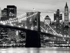 Флизелиновые фотообои Brooklyn bridge 360x270 см ED-94812