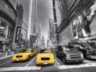 Флизелиновые фотообои Manhattan cars 360x270 см ED-94849