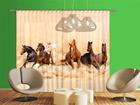 Затемняющее фотошторы Herd of horses 280x245 см ED-95347