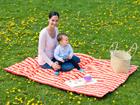 Одеяло для малыша и пикника Molly orange LI-96569