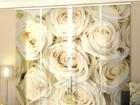 Просвечивающая панельная штора Champagne Roses 240x240 см ED-97627
