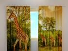 Затемняющая штора Giraffes 240x220 cm ED-98023