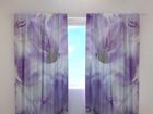 Затемняющая штора Gladioli 240x220 cm ED-98030