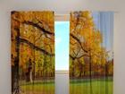 Просвечивающая штора Golden autumn 240x220 cm