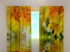 Полузатемняющая штора Golden leaves 240x220 cm ED-98060