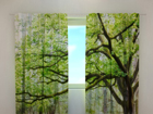 Затемняющая штора Green tree 240x220 cm ED-98151