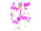 Настенная наклейка Flamingos 65x85 см ED-98904