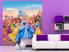 Флизелиновые фотообои Disney Princess 180x202 cm ED-99086