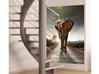 Флизелиновые фотообои Elephant 180x202 cm ED-99099