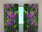 Затемняющая штора Lilac 1, 240x220 см ED-99342