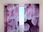 Затемняющая штора Lilac 240x220 см ED-99354
