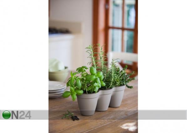 Цветочный горшок Keter Ivy Herbs TE-109002
