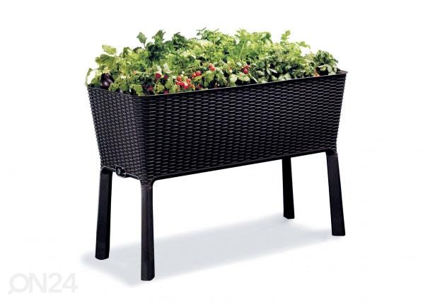 Цветочный ящик Keter Easy Grow 114x49xh76 cm, antracite TE-109074
