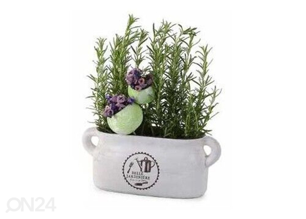 Горшок для трав Belle Jardiniere SG-131551