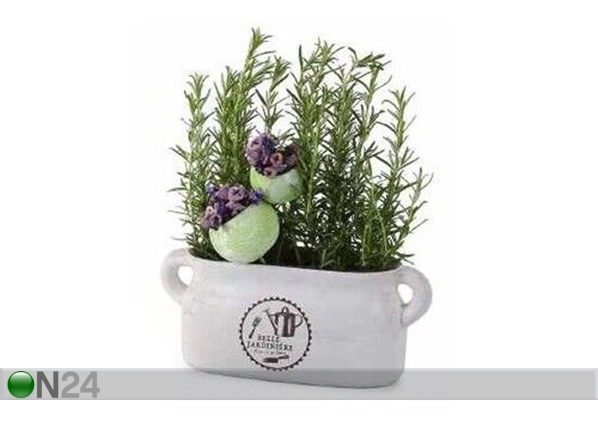 Горшок для трав Belle Jardiniere SG-131553